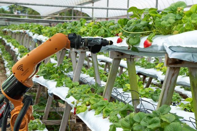 how mechatronics engineering is advancing agriculture