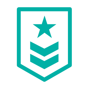 Military badge icon